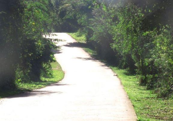 Iguazú: paseaba en bicicleta por las 600 hectáreas y fue atacada con intenciones de robo
