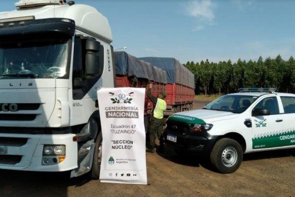 Gendarmería decomisó más de 190 toneladas de soja en Ituzaingó