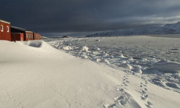 Se congeló la superficie del agua del mar frente a la Base Carlini en la Antártida