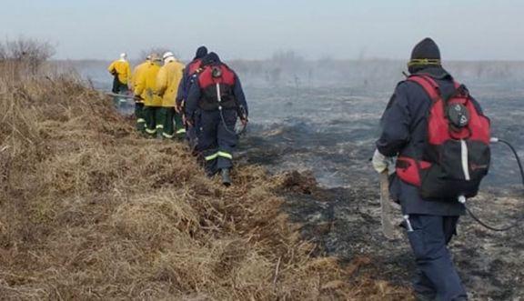 Despliegan más brigadistas y lanchas para combatir los incendios forestales en el delta del Paraná