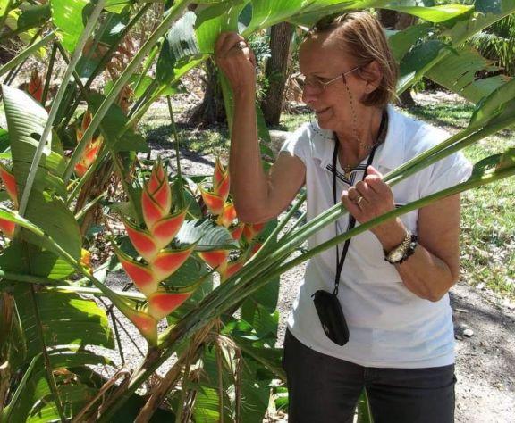 Montecarlo: a los 77 años falleció Margarita Gotz, quien dedicó su vida a la pasión por las orquídeas