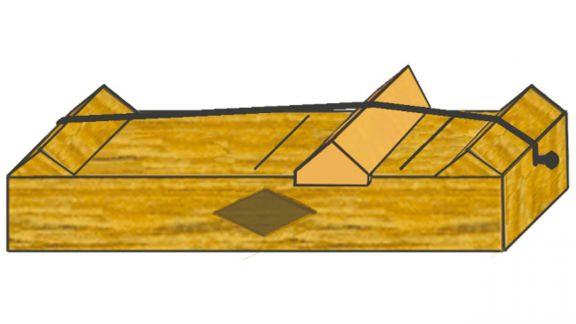 El caso Pitágoras y el monocordio