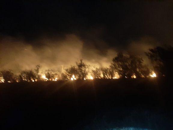 Sofocaron principios de incendios de pastizales y malezas en la provincia