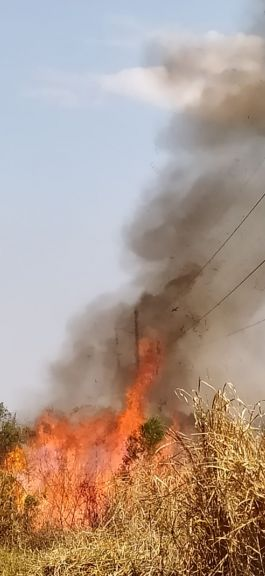 Quema de pastizales en cercanías al lago Uruguaí, provocó la caída de postes de energía