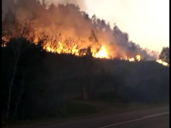 """En pocas horas hubo ocho focos de incendio en El Soberbio, todos """"por negligencia de la gente"""""""