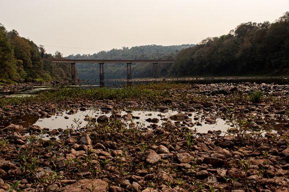 Río Paraná: la bajante ya causó pérdidas por 620 millones de dólares
