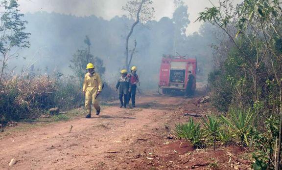 El fin de semana sofocaron 51 incendios en la provincia