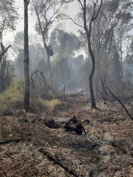 La aldea Tekoa Arandú ya perdió 20 hectáreas a consecuencia de un incendio