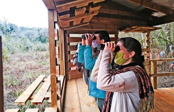 El observatorio de aves, nuevo atractivo del Parque Iguazú