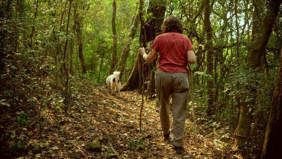 Dueños y protectores de la selva misionera