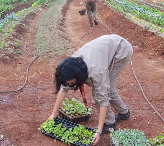 IEA 13 de Guaraní se prepara la fiesta provincial que muestra el potencial educativo agropecuario