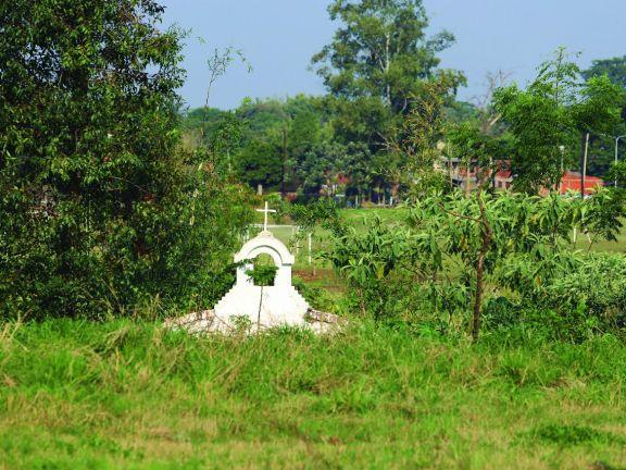 Perlitas urbanas: Pulmón verde sagrado