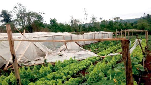Productor pide ayuda ante los destrozos que causó la tormenta