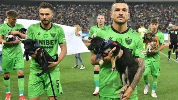 Adopción Responsable: equipos rumanos presentarán a perros en adopción antes de cada partido