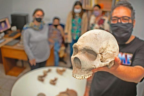 Tecnología 3D para  explicar la evolución humana