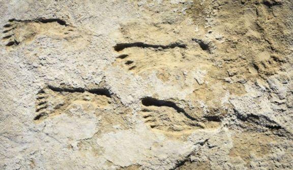 Huellas de 23.000 años reescriben la historia humana de América del Norte