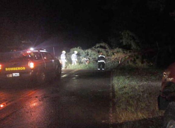 Varias familias afectadas por el intenso temporal que se desató en distintas localidades
