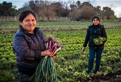 Empoderando a la mujer rural
