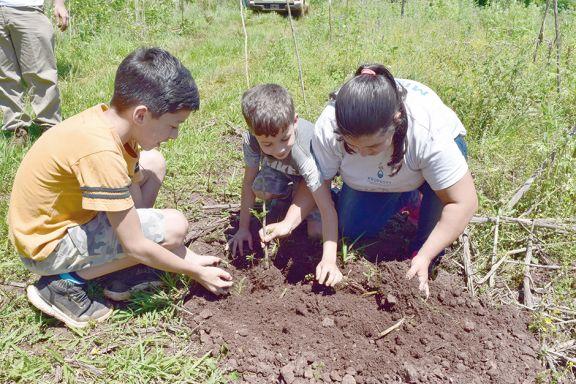 Rescatar tierras para la selva