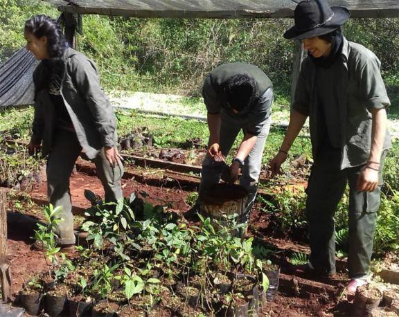 Estudiantes de la carrera de Guardaparque trabajan de forma voluntaria en áreas protegidas