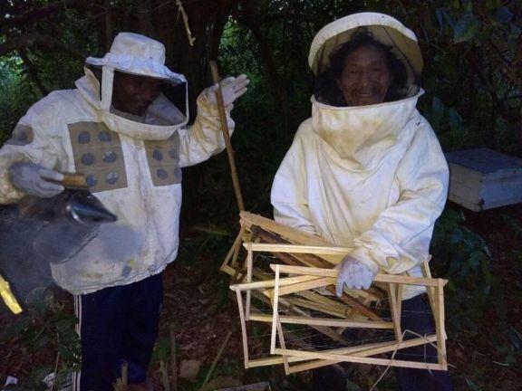 Recolección de miel