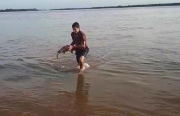 Ituzaingó: Se normaliza la situación tras bajante del Paraná y el hallazgo de peces muertos
