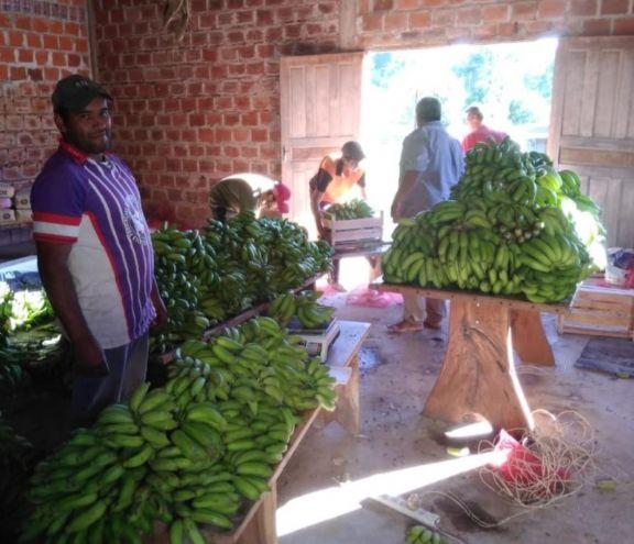 En Pozo Azul, ofrecen productos de la chacra por delivery