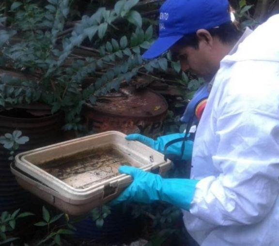 Continúan las tareas de prevención del dengue en Oberá