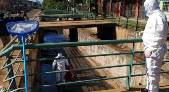 Contaminación del arroyo Vicario: continúa la medición del impacto ambiental