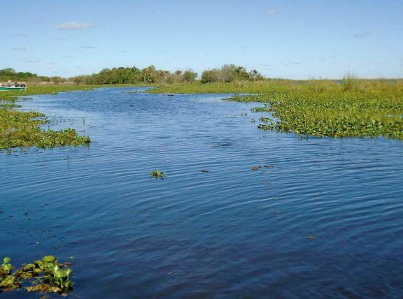 De algunos de los principales ríos, de los puertos y de los peces