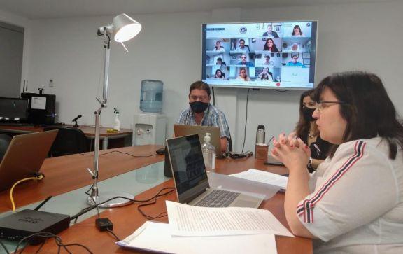La diputada Natalia Rodríguez encabezando la reunión, por videoconferencia, donde se firmó el dictamen de los presupuestos