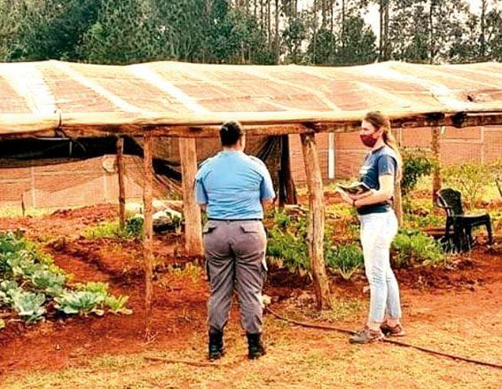 Apuntan a fortalecer oficios con el cultivo de huertas en penales
