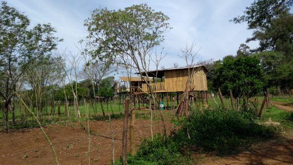 Intentan llegar a los responsables de la usurpación de tierras en Santo Tomé