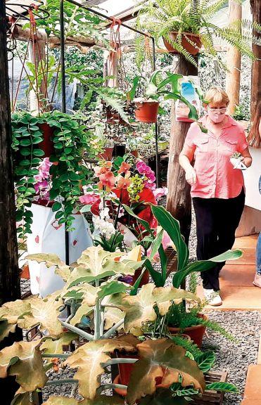 La floricultura se abre paso con una creciente demanda