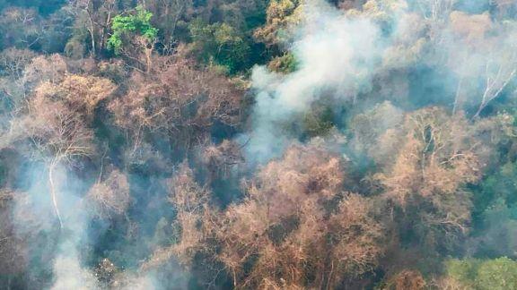 Cinco provincias continúan afectadas por incendios forestales