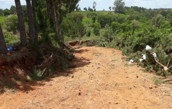 San Pedro: Tras intervención de Tierras, se destrabó el conflicto por camino vecinal
