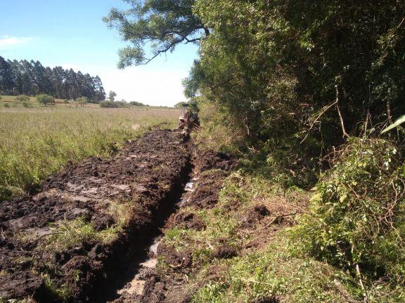 Misiones pedirá declarar la emergencia agropecuaria por las sequías