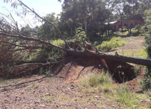 Solicitan apertura de accesos a la localidad de San Pedro