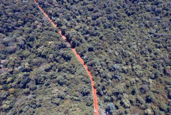 Trabajan para mejorar la ruta 101 que atraviesa el Parque Nacional Iguazú