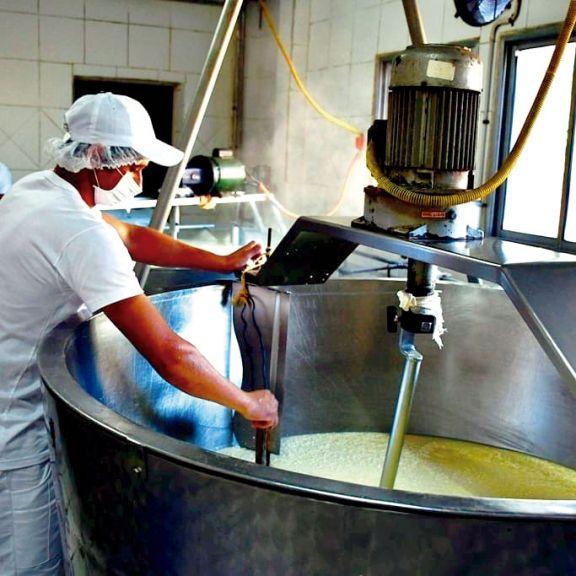 Crece la producción industrial de quesos en la zona Norte