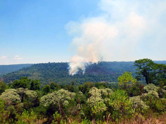 Incendio en Yabotí: con más de 25 hectáreas consumidas, llegó la intervención del avión hidrante