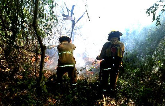 Focos de incendio se multiplican y los bomberos no dan abasto