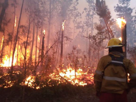 Misiones sufre con los incendios: En Yabotí y Cuña Pirú ya se quemaron más de 100 hectáreas y evacuan familias