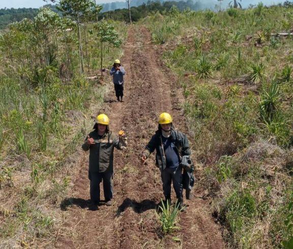 Se incendió una zona de monte cercana al parque municipal Saltos del Tabay