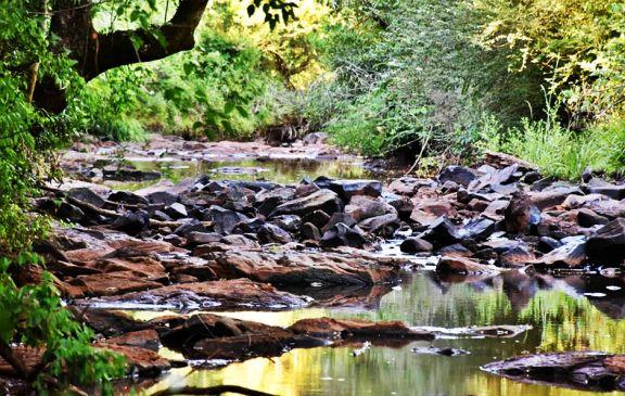 Declaran emergencia hídrica durante 90 días en Capioví