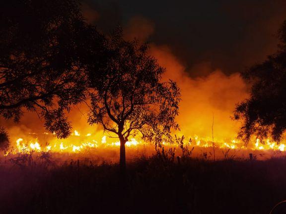 En Virasoro trabajan de madrugada para frenar el fuego