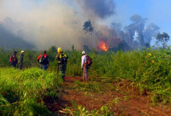 El fuerte viento y la falta de humedad complican la tarea de los bomberos en los incendios