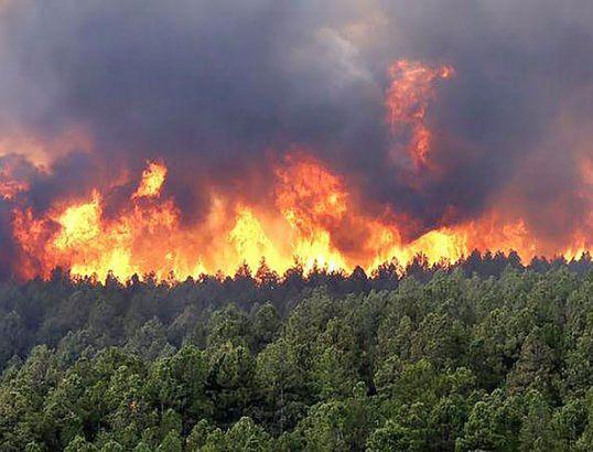 Incendios Forestales en Misiones