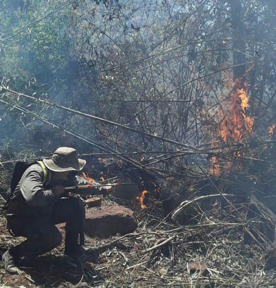 Incendios forestales amenazan zonas urbanas y aldeas y encaran evacuación