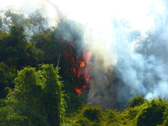 Incendios en Yabotí